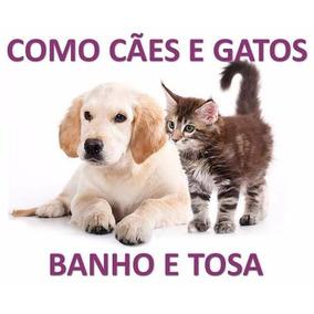Curso Banho E Tosa Para Cães, Gatos Em 23 Dvds - A43