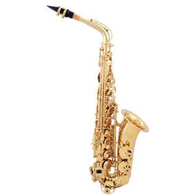 Saxofone Custom Alto Laqueado Eb Mi Bemol + Hard Case Loja !