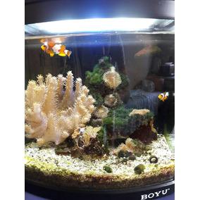 Aquario Boyu Mt308 Led 110v 13w