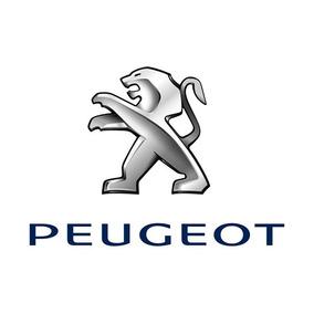 Bomba Agua Electrica Peugeot Rcz 1.6 Thp Desde 2013