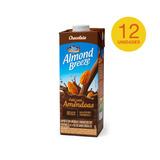 Combo Alimento Com Amendoa Almond Breeze Chocolate 1l -12un