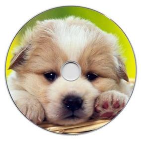 100 Mídias Cd Ou Dvd Com Impressão E Gravação Personalizados