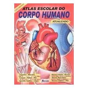 Atlas Do Corpo Humano Pdf