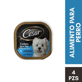 Kit Cesar Alimento Perro Adulto Charola Sabor Cordero 100gr
