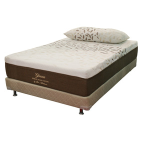 Colchon Bio Mattress Genova Memory Foam Queen Size Con Box