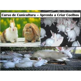 Curso De Cunicultura - Aprenda A Criar Coelhos !!!