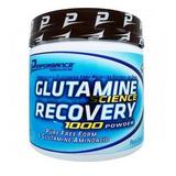 Promoção Glutamina 300g Performance (validade 09/20)