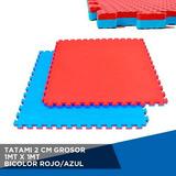 Tatami 2 Cm Grosor 1mt X 1mt Bicolor Rojo / Azul.