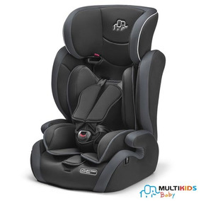 Cadeira Para Auto Elite 9-36 Kg Cinza - Multikids Baby