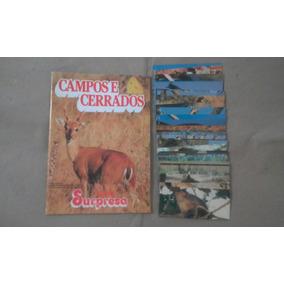 Álbum Campos E Serrados Completo Chocolate Surpresa #igs