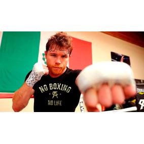 Canelo Alvares No Boxing No Life Cleto Reyes Mayweather Ggg