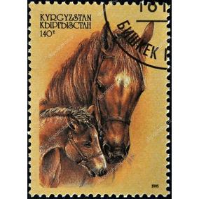 Selo Cavalo Stanco Zignauko