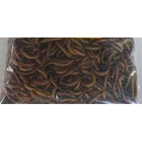 Tenébrios Gigantes Desidratados, Larvas(350 Un) Frete Grátis