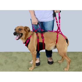 Peitoral Para Levantar Cães Com Suporte Traseiro G