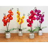 Linda Orquídea Pequeña En Arreglo Floral
