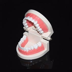 Arcada Dentária Manequim Odontológico C/ Dentes Fixos Cód246