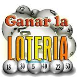 El Libro De Las Loterias De Venezuela (pdf)