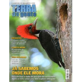 Revista Terra Da Gente Ano 8 - Nº 96 - Abril De 2012