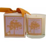Aroma Paws Leones Y Corderos Vela 12ounce Lavender Vetive