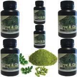 Moringa Oleifera 100% Pura 6 Potes 360 Capsulas Frete Grátis
