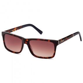 Óculos Sol Feminino Colcci Refinado - Óculos no Mercado Livre Brasil 5de0737ae4