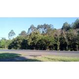 Área De Terra Localizado(a) No Bairro Divisa Em Capela De Santana / Capela De Santana - 3943