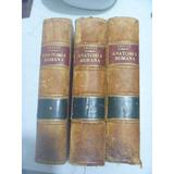 Anatomía Humana. Testut Y Latarjet. 8a Edición. Tres Tomos