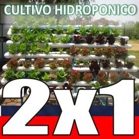 Aprende Hidroponia Cultivos Sembrar Hidroponicos 2 X 1