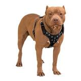 Peitoral Couro - Pitbull, Rottweiler, Bullterrier, American