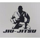 Treinamento Jiu Jitsu - Vídeo Aulas