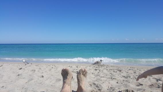 Miami Sunny Frente A La Playa.hermoso 2amb.equipado Str00484