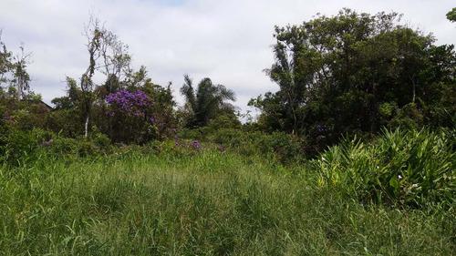 Terreno Em Itanhaém - Parcialmente Aterrado Ref. 06