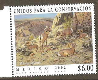 2006 Conservación Del Borego Cimarrón, Fauna