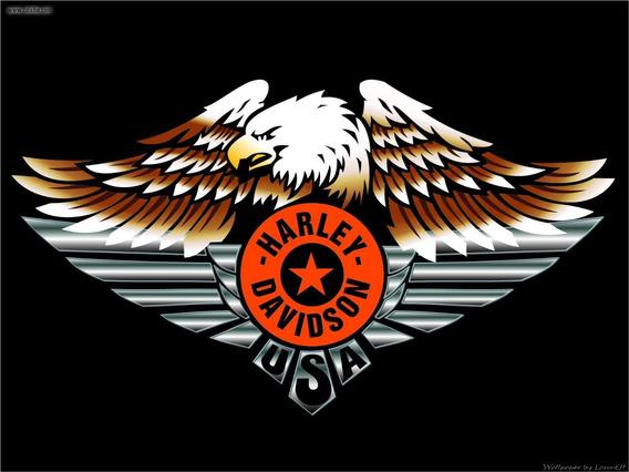 Camisa Harley Davidson Classical Eagle - Emborrachada A4