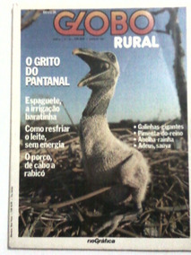 Revista: Globo Rural Nº 16 - O Grito Do Pantanal