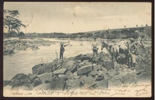 Gaensly - Rio Mogi-guassu - Pesca De Dourados - São Paulo