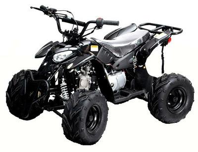 Quadriciclo 110cc , 4 Marchas, Automatico, A Gasolina 0 Km