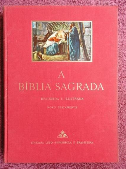 Bíblia Sagrada - Novo E Velho Testamento - Decoração