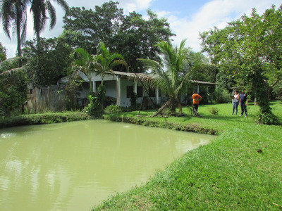Miracatu - Linda Chácara/5800 Mts/lagos/fundo Rio Ref: 04326