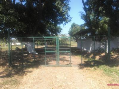 Hacienda O Finca En Venta En Carabobo - Carlos Arvelo (gu...