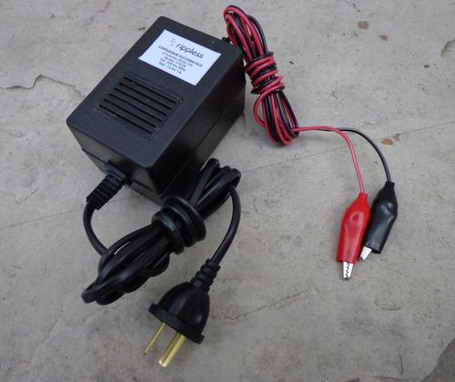 Imagen 1 de 3 de Cargador Automatico De Baterias Gel 6v Ó 12v Vehiculo Niño