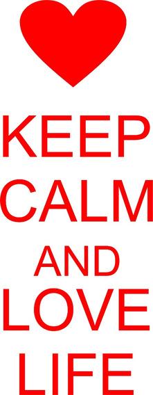 Adesivo Automotivo Frase Keep Calm And Love Life Coração