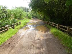 Vendo Terreno De 1ha+7981 M2 En La Chorrera, Perequeté