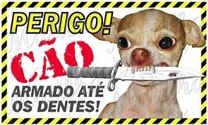 Placa Advertência Cães Pets Vestidos Go Pro Celular Ps4 Led