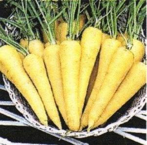 10 Semillas De Zanahoria Amarilla Mercado Libre 1 cuchara de ralladura de cáscara de naranja. mercado libre