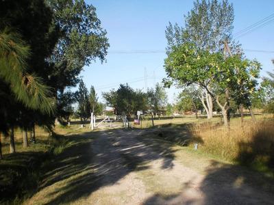 Campo Con Importantes Mejoras