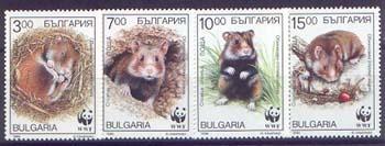 Bulgaria 1994. Fauna: Hámsters - W W F - 4 Estampillas