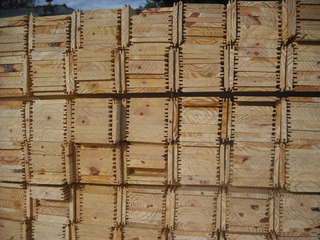 Machimbre De Pino P Techo Tirantes Cepillados. Precio Por M2