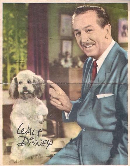 Antiguo Poster Walt Disney Revista Canal Tv