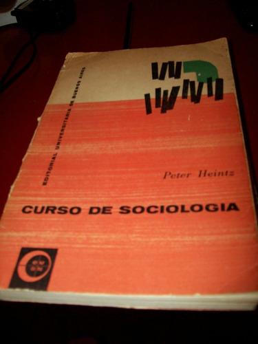 Curso De Sociologia Por Peter Heintz